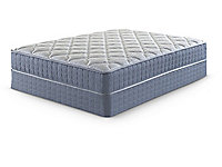 Dryden Plush Full Low Profile Mattress Set